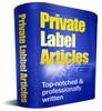 25 PC SECURITY Article Collection With Plr